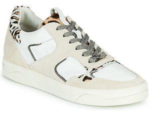 Xαμηλά Sneakers Mam'Zelle ARTIX ΣΤΕΛΕΧΟΣ: Δέρμα & ΕΠΕΝΔΥΣΗ: Δέρμα & ΕΣ. ΣΟΛΑ: Δέρμα & ΕΞ. ΣΟΛΑ: Καουτσούκ